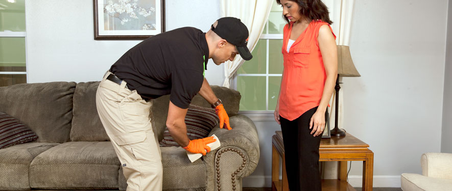 Erie, PA carpet upholstery cleaning
